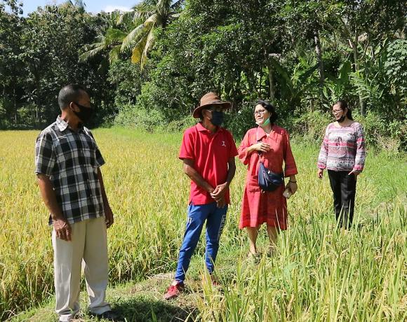 Desa poh santen tidak terlalu terdampak covid-19, karena pertanian-kabarbalihits