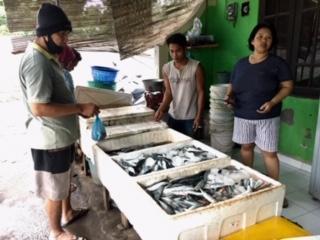 Pergantian Tahun Minim Perayaan, Ikan Laut Lesu Pembeli-kabarbalihits