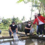 Bupati Giri Prasta Tebar 30 Ribu Benih Ikan Nila di Anggungan, Komitmen Jadikan Daerah Aliran Sungai Sebagai Tampak Depan Badung